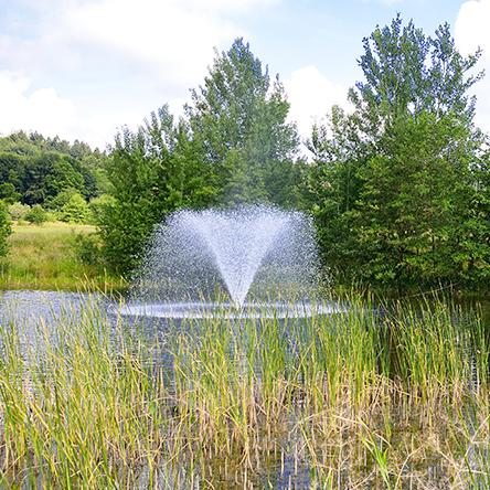 Fountain Management