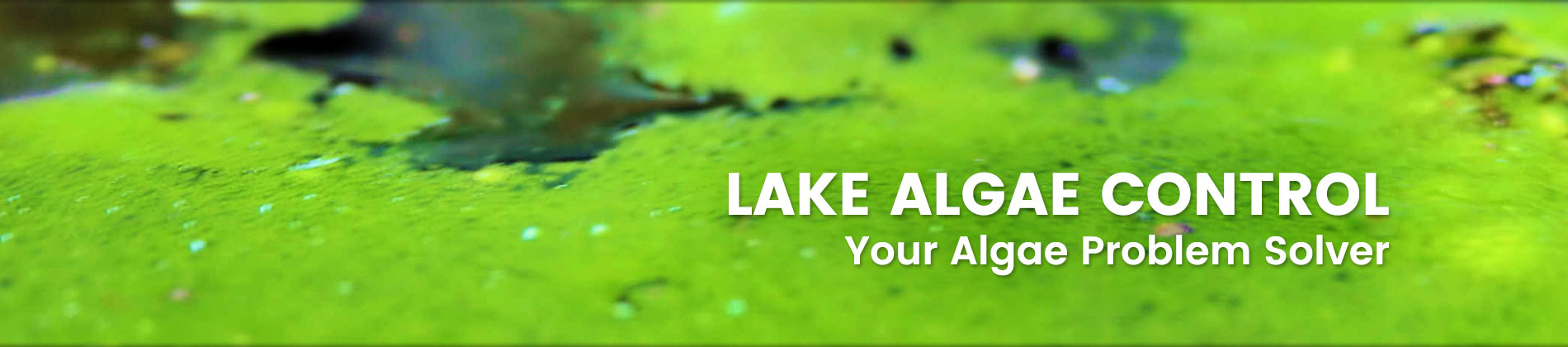 Lake Algae Control