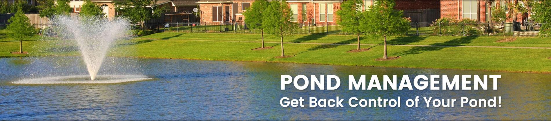 Daytona Pond Cleaning