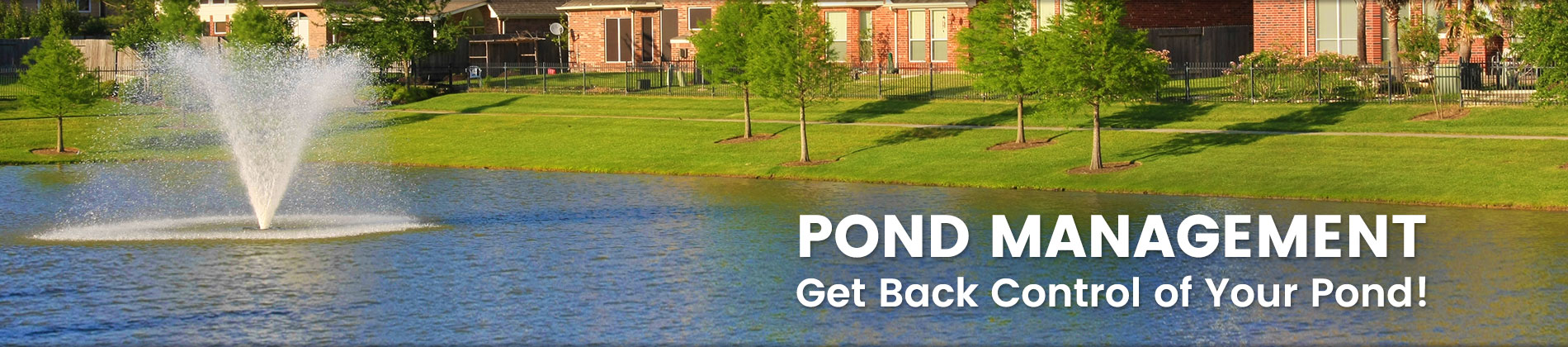 Sanford Pond Cleaning